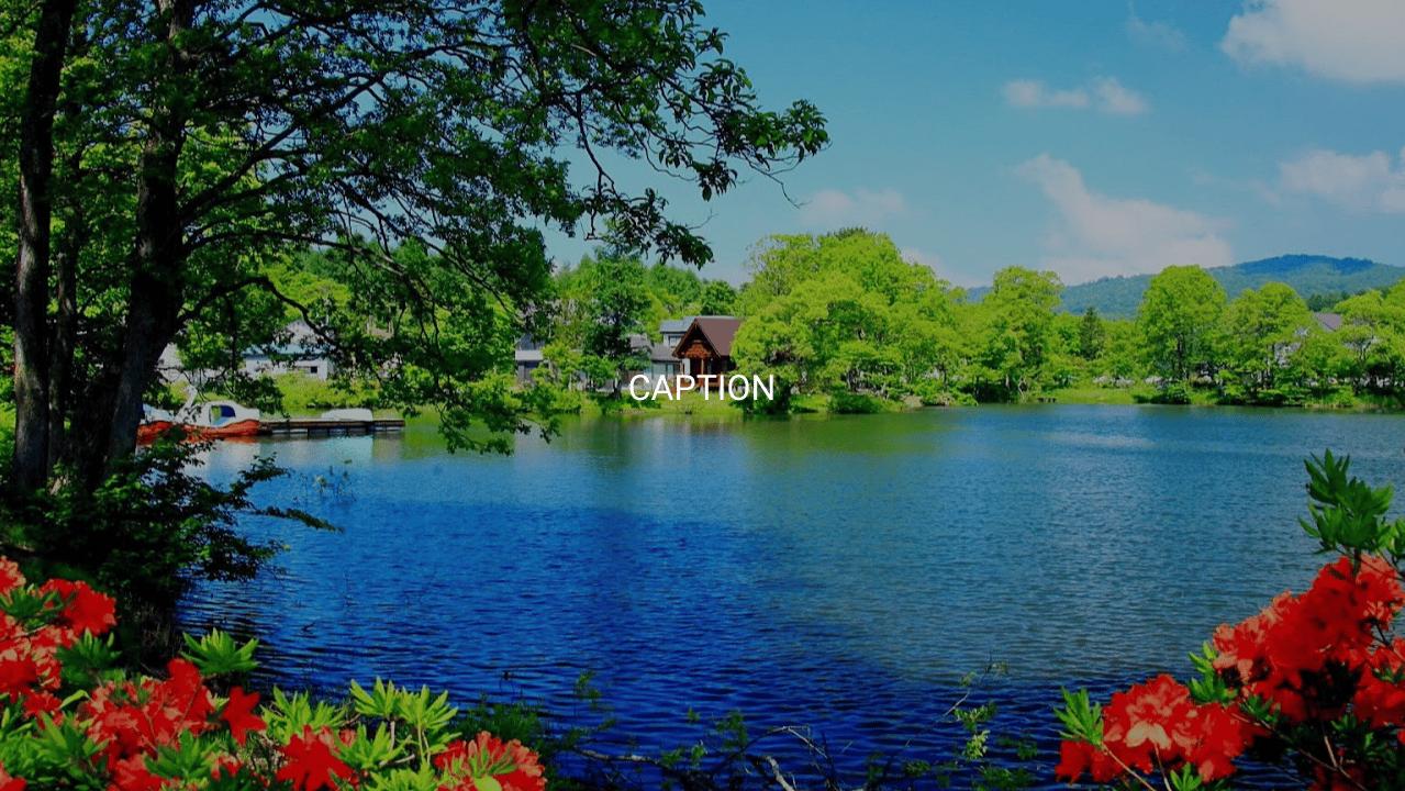 CodePen - Background Image