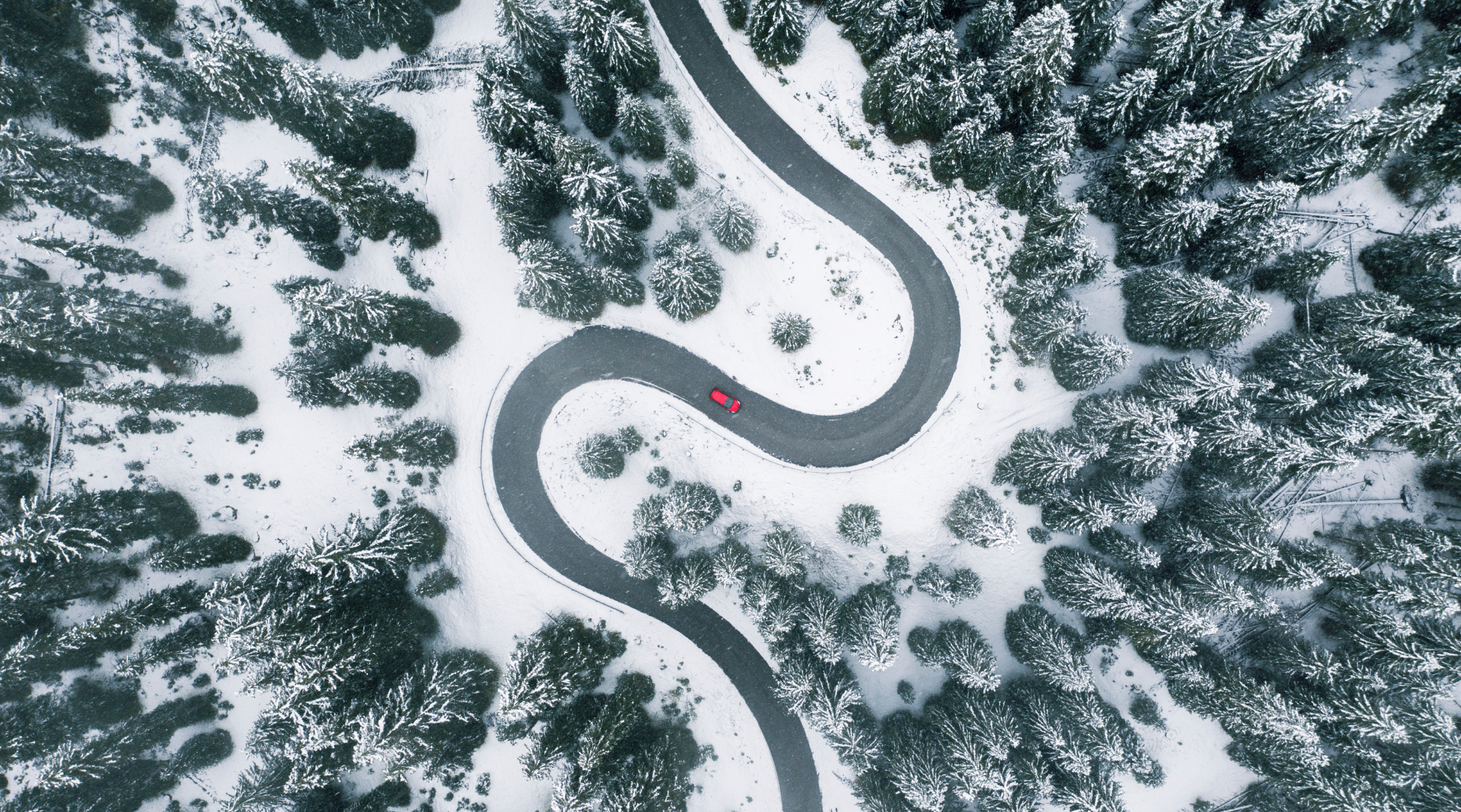 a highway in a snow forest